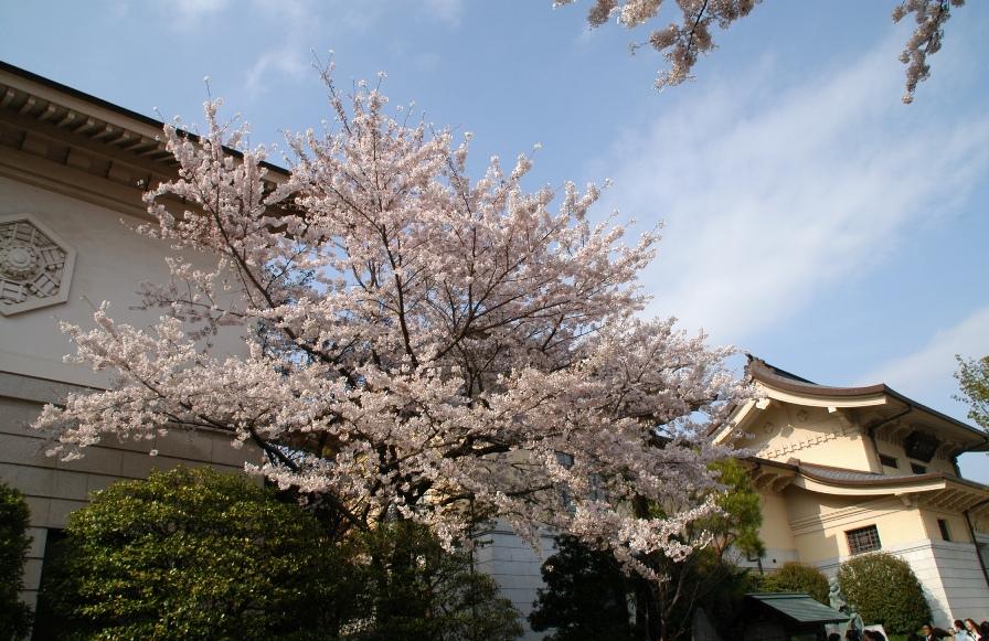 yasukuni0308.jpg
