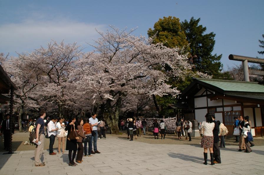 yasukuni0314.jpg