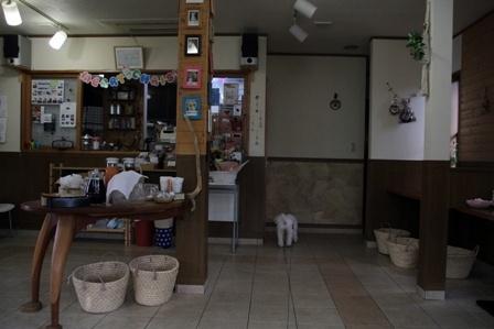 モフ★ランチ (11)