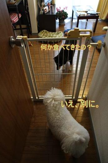 うだうだタイム (7)