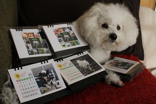 カレンダー作った (1)