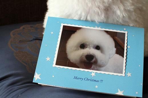 クリスマスカードと、年の瀬のご挨拶。