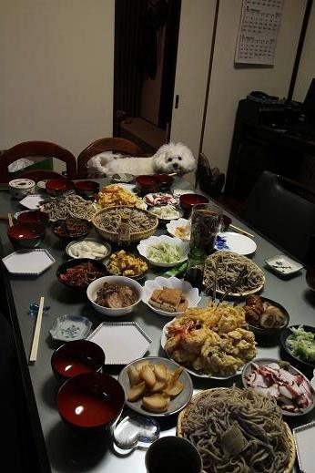食卓と犬 (2)