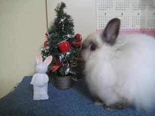 クリスマスイブ4