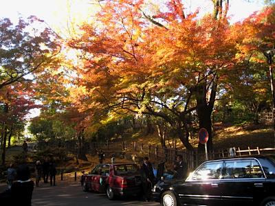 maruyama_1123_2.jpg