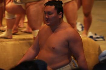 20090429hakuhou