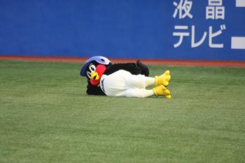20090516tsubakuro
