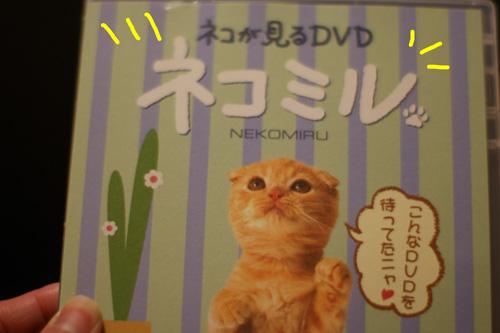 3_20100223185232.jpg