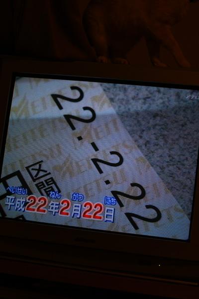 8_20100225192602.jpg