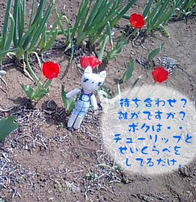 20100422-4