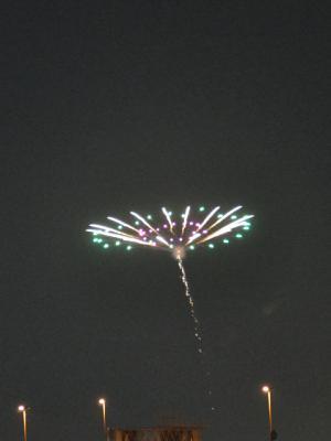 20090602_4