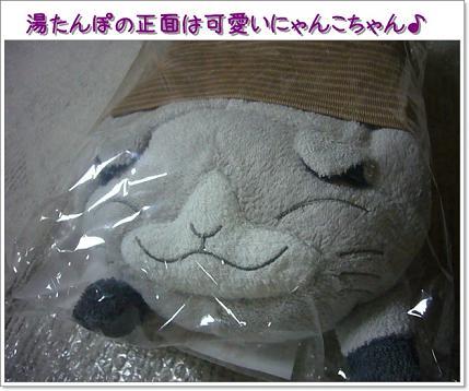 湯たんぽ(正面)