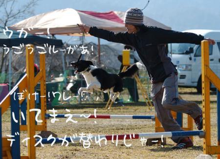 100222blog4.jpg
