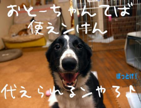 100323blog.jpg
