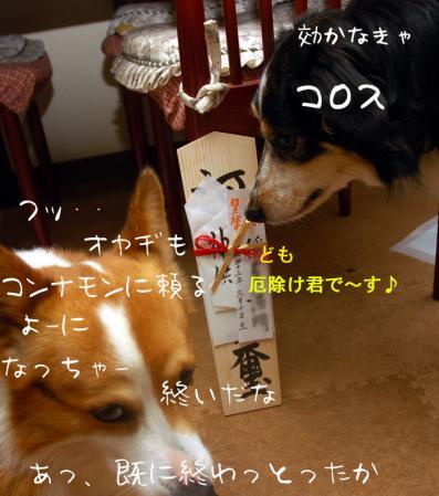 100406blog.jpg