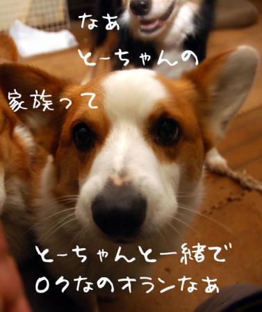 100412blog1.jpg