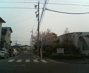 20070418103527.jpg