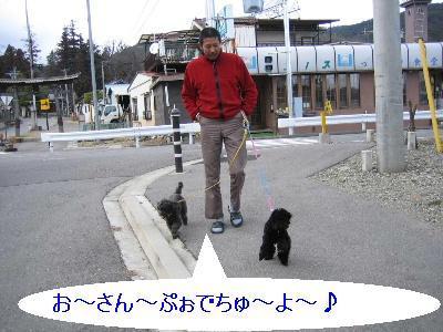 20090310a.jpg