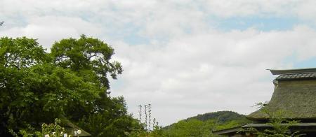 忍野八海から富士山この辺?