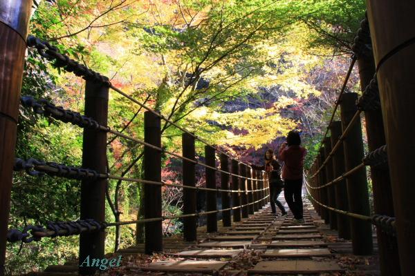 汐見滝吊り橋Angel3