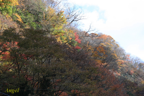 袋田の滝入口付近Angel1