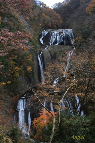 袋田の滝Angel1