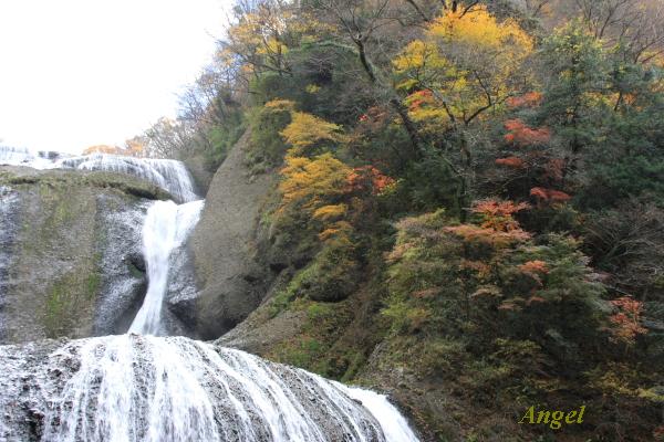 袋田の滝Angel11