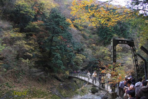 袋田の滝Angel14