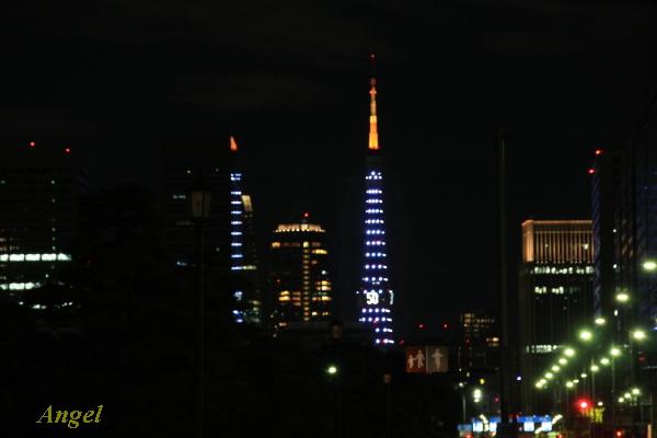 東京タワーAngel1