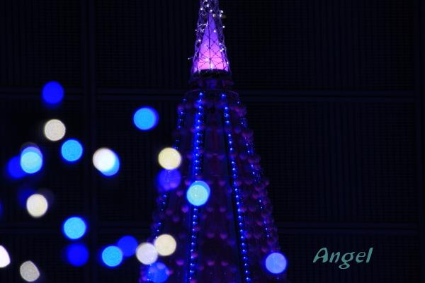 ブルーオーシャンAngel3
