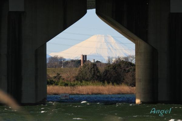 富士山Angel3