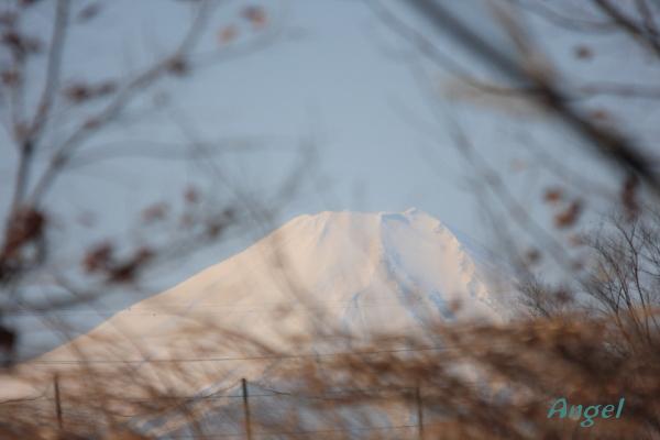 富士山Angel5