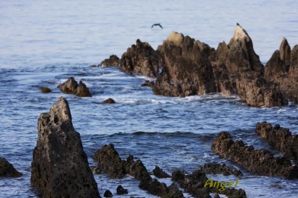 南房白浜の海Angel1