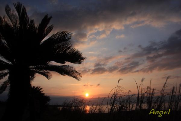 南房白浜の日の出Angel1