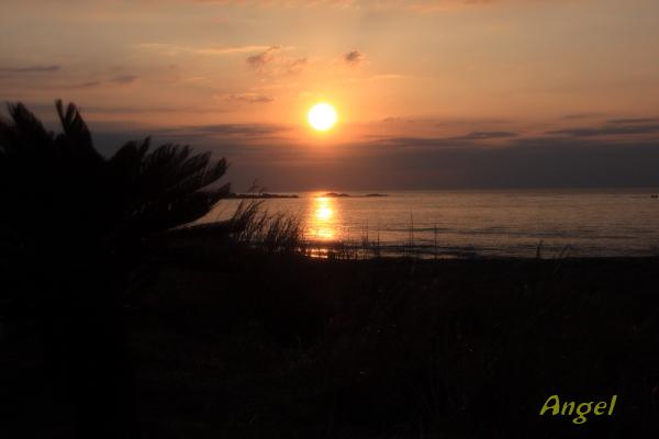 南房白浜の日の出Angel2