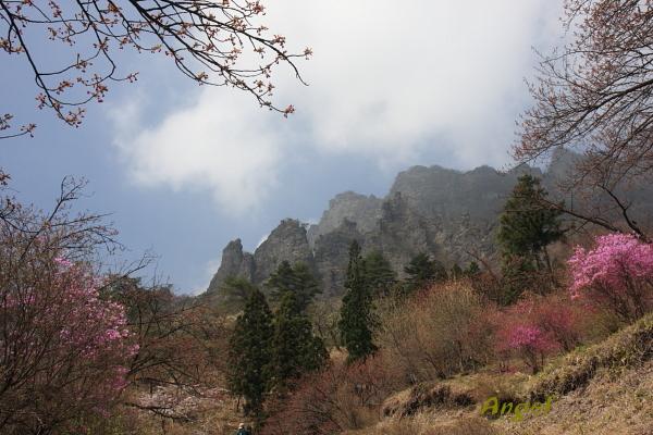 妙義山Angel12
