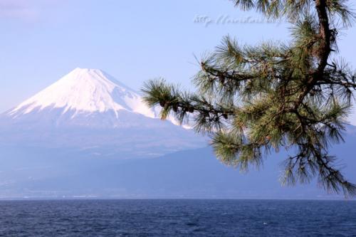 戸田から富士山