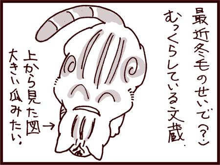 vol5S_001.jpg