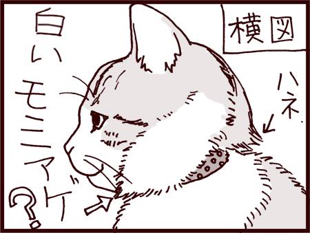 vol5S_003.jpg