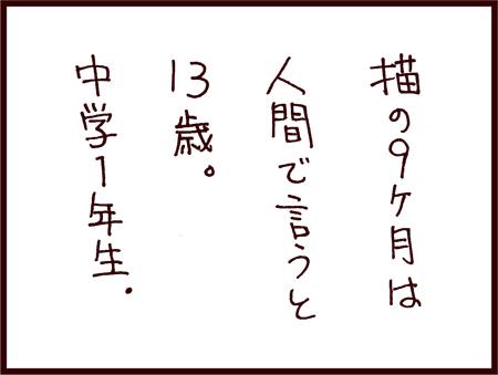 vol6S_002.jpg