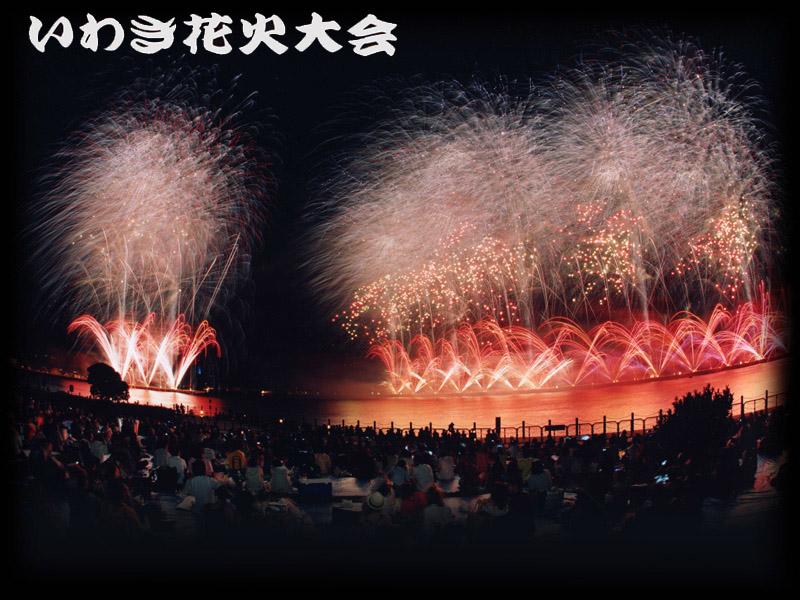 2011_top.jpg