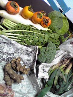 野菜たちImage6811