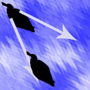 V字波形追随採餌の模式図