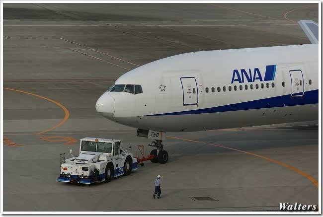 ANA2.jpg