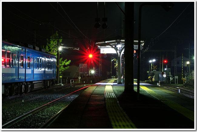 DSC02892.jpg
