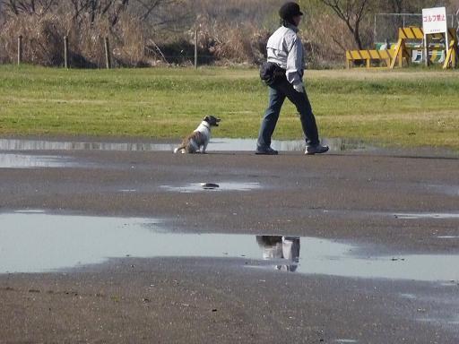 12月18日雨の翌日ぬかるみで遊ぶ-6