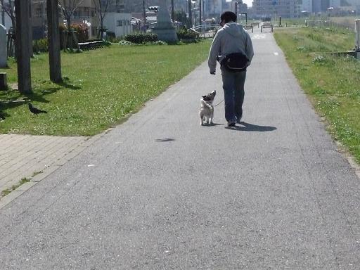 3月何気なく歩く散歩の時でも また目を合わせる