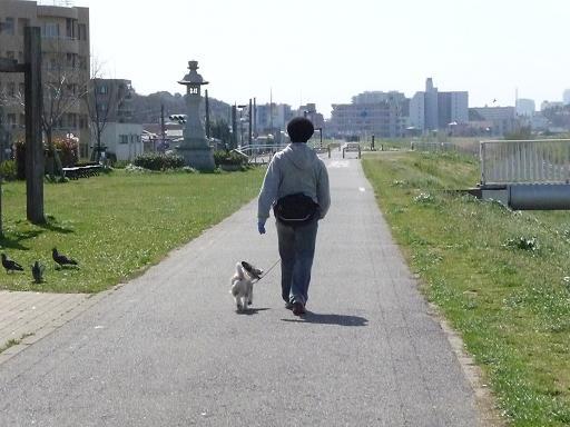 3月何気なく歩く散歩の時でも ゆったり前を見て歩き