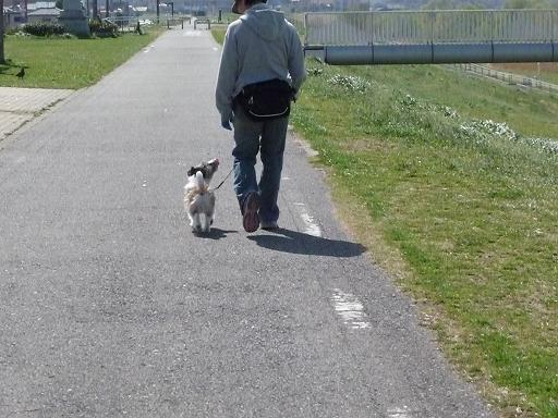 3月何気なく歩く散歩の時でも 目を合わせる