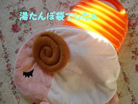(^w^)ププッ湯たんぽ袋